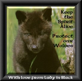 Lady in Black-Another Wolf Lover